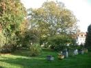 Park - dawniej