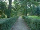 Park - dawniej_5